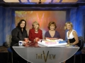 rosie-odonnell-barbara-walters-Rosie_ODonnell_Barbara_Walters_TheView07 (800x585)