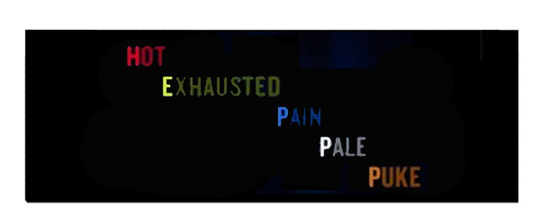 Hot Exhausted Pain Pale Puke